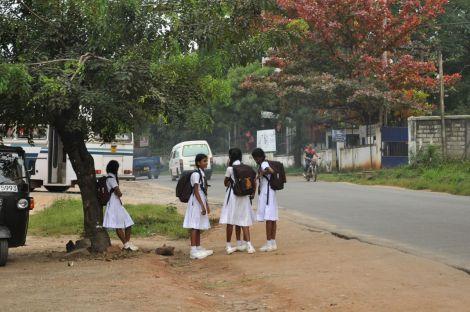 School kids. Sri Lanka